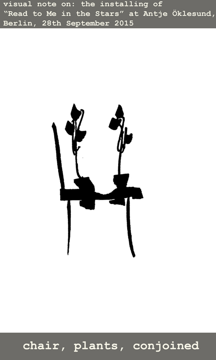 Chair plants2
